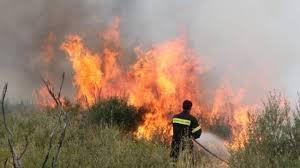 Πυροσβεστικό Σώμα Στερεάς-Αντιπυρική περίοδος 2016: Μια ακόμα χρονιά χωρίς λύσεις στα βασικά μας ζητήματα!»